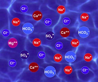 ion trong nước
